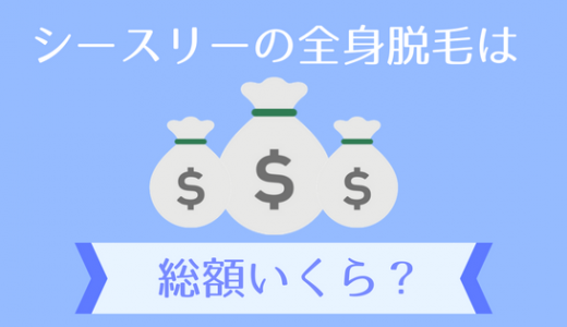 シースリー(C3)の全身脱毛し放題は総額いくら?月5800円の料金形態と支払い方法を徹底解説
